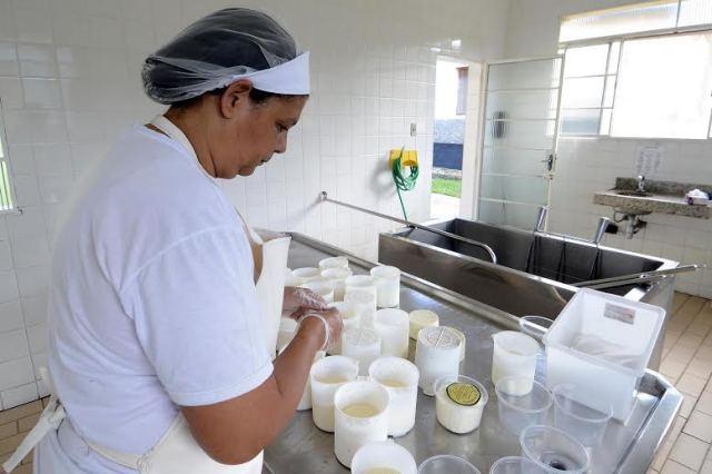 Produção de queijo pela agricultura familiar.Data: 09-02-17Local: VespasianoFoto: Omar Freire/Imprensa MG